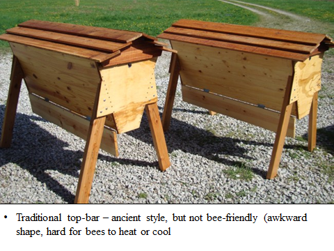 Top Bar Hives ...